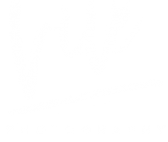 Vue Photography