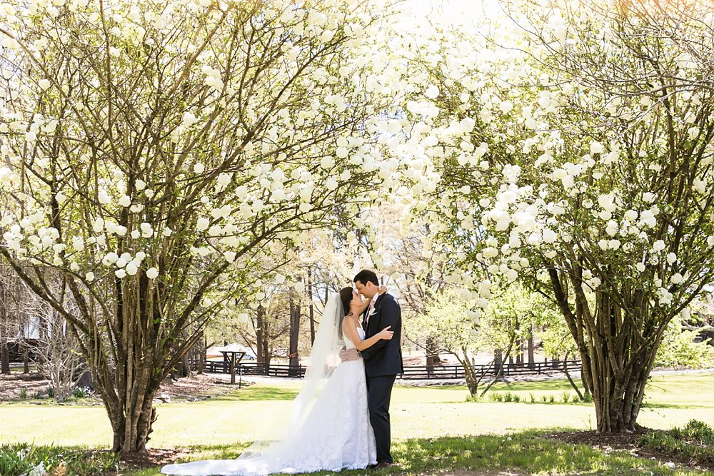 serenbe wedding : gloriosa designs : vue photography0055