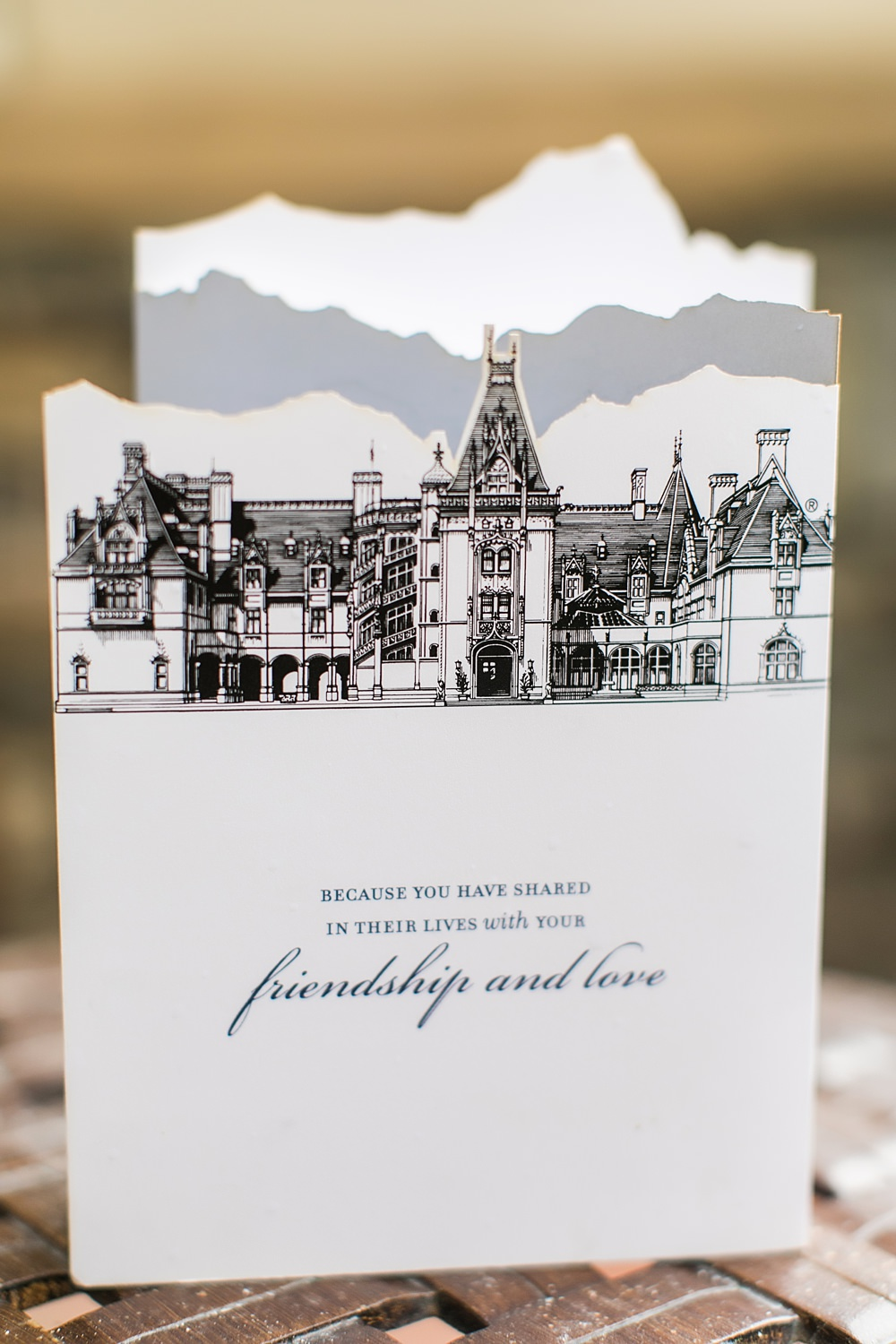 biltmore estate wedding : asheville event company : vue photography0003