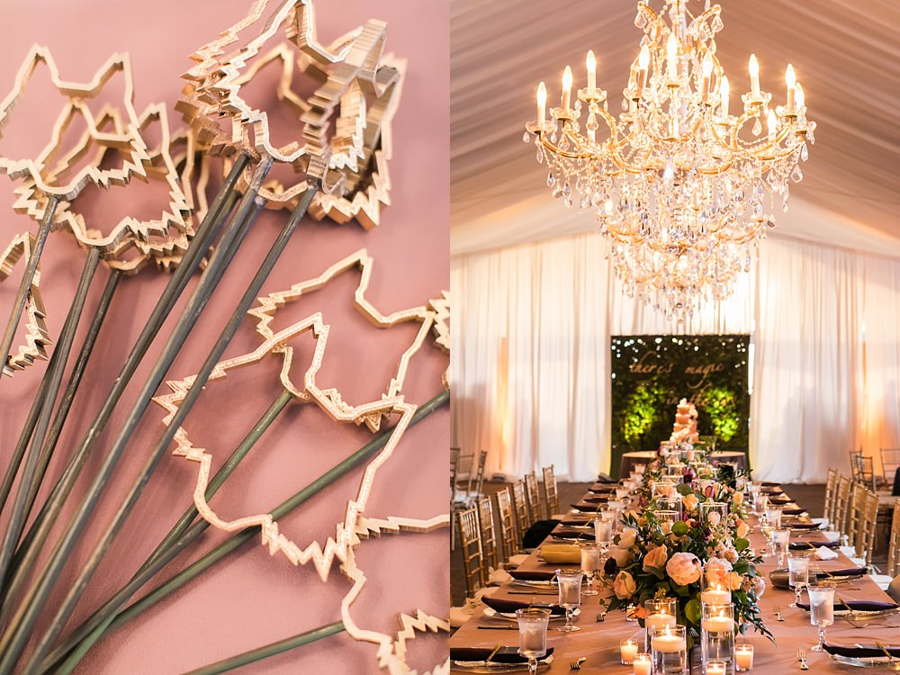 biltmore estate wedding : asheville event company : vue photography0055