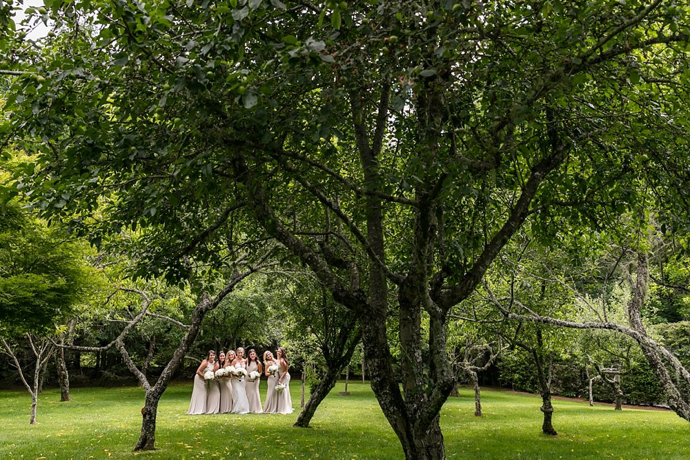 farm at old edwards wedding : toast events : jackson durham : vue photography 0021