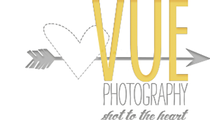 Vue Photography logo